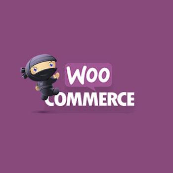 7. WooCommerce